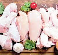 گوشت سایر پرندگان
